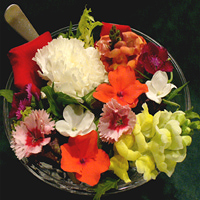 Edible Flowers Safety Chart Link